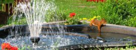 11 Best Solar Powered Fountain Pumps