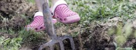 Best Garden Shoes for 2020