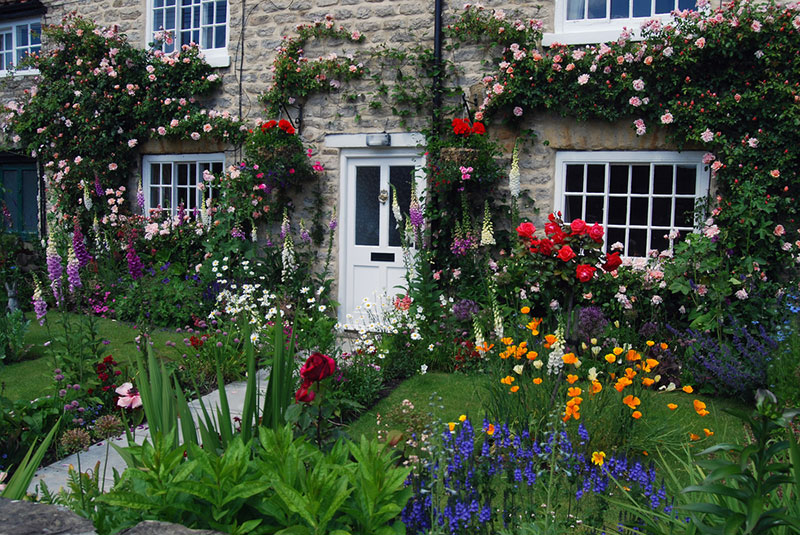 How to Design a Stunning Old-Fashioned Cottage Garden ... Old Fashioned Garden Design on narrow garden design, old world garden design, food garden design, good garden design, cheap garden design, clean garden design, elegant garden design, organic garden design, religious garden design, gothic garden design, summer garden design, primitive garden design, vintage garden design, classic garden design, white garden design, romantic garden design, unique garden design, natural garden design, cold garden design, small garden design,