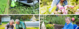 Tips to Make Gardening Easy for Seniors (Helpful Products)