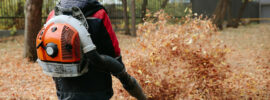 Best Backpack Leaf Blower For Clearing Your Garden- The Ultimate Guide