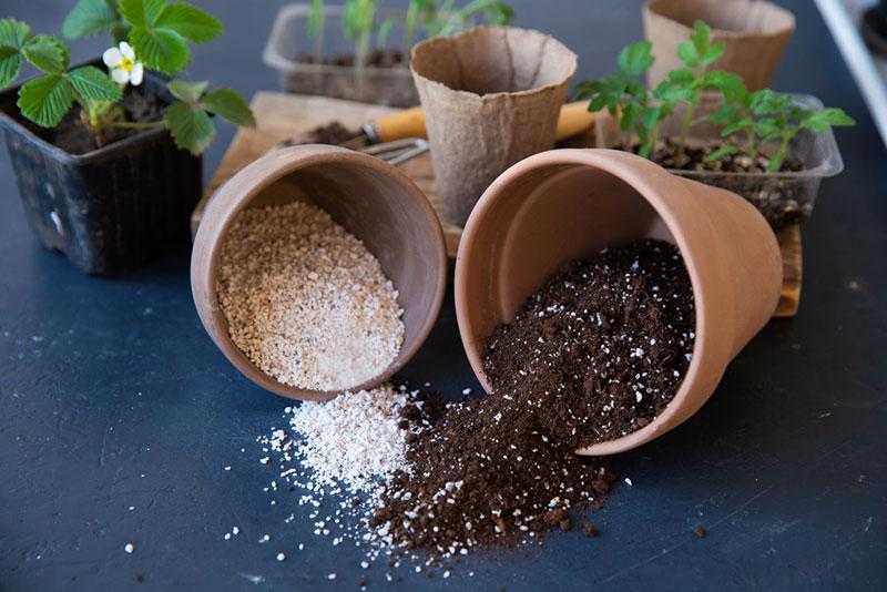 perlite-soil-mixture